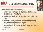 blue velvet success story