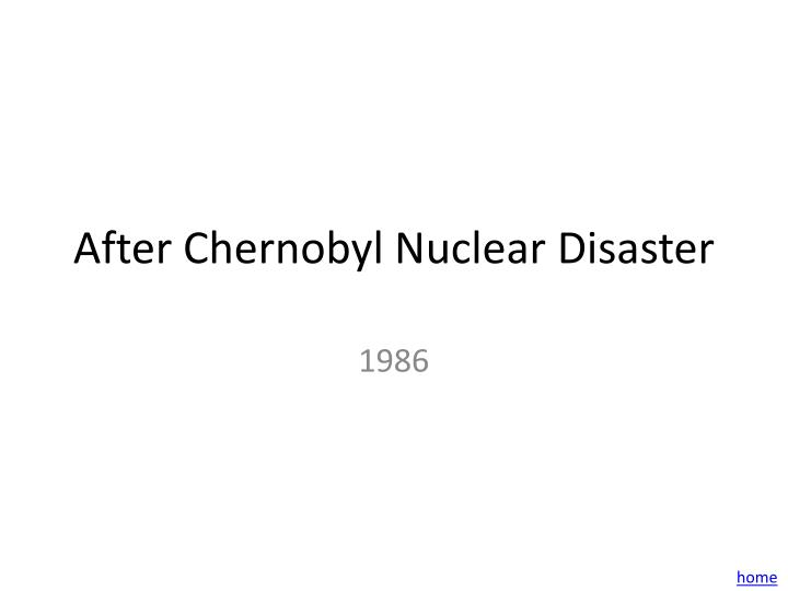 After Chernobyl Nuclear Disaster