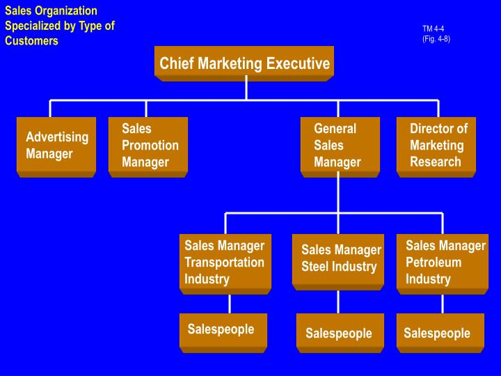 Sales Organization Specialized by Type of Customers