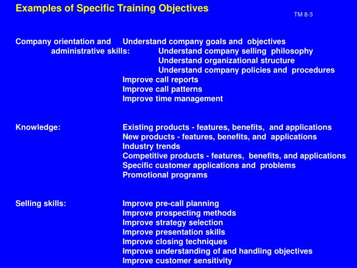 Examples of Specific Training Objectives