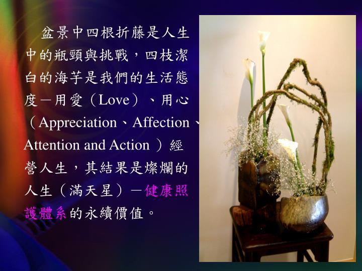 盆景中四根折藤是人生中的瓶頸與挑戰,四枝潔白的海芋是我們的生活態度-用愛