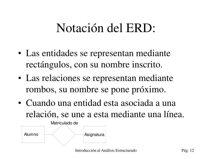 Notación del ERD: