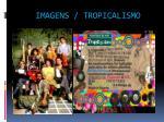 imagens tropicalismo