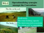 operationalizing synergies amongst the conventions