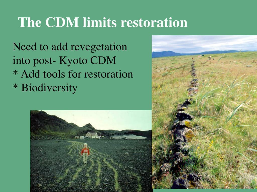 The CDM limits restoration
