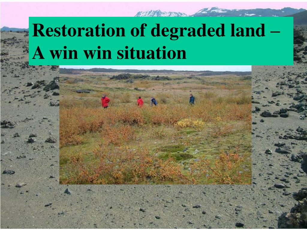 Restoration of degraded land – A win win situation
