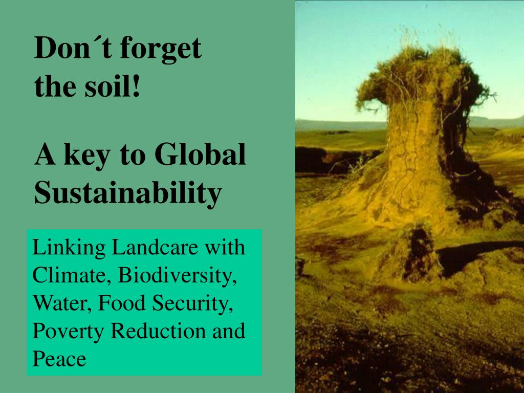 Don´t forget the soil!