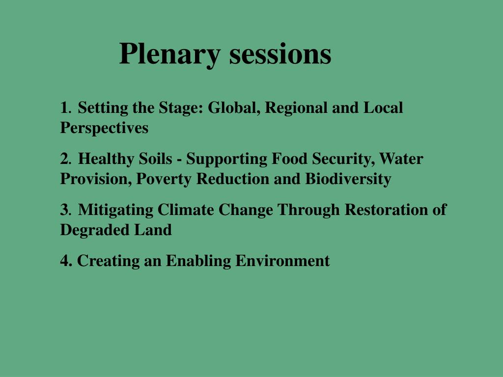 Plenary sessions