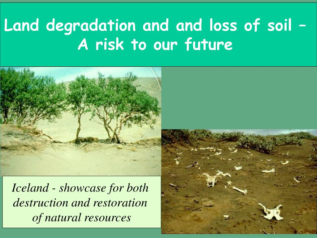 Land degradation and and loss of soil –