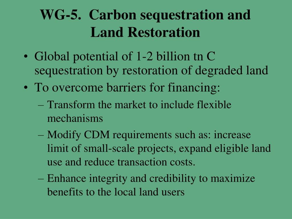 WG-5.  Carbon sequestration and Land Restoration