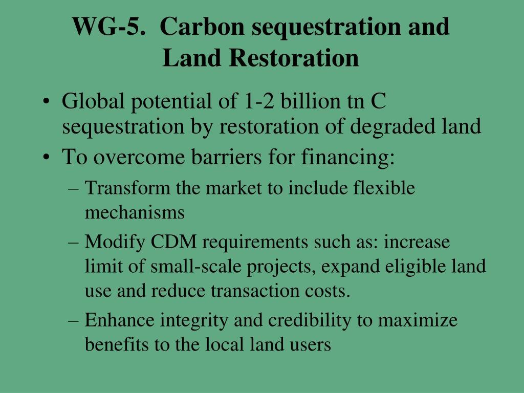 WG-5.  Carbon sequestration and Land Restoration