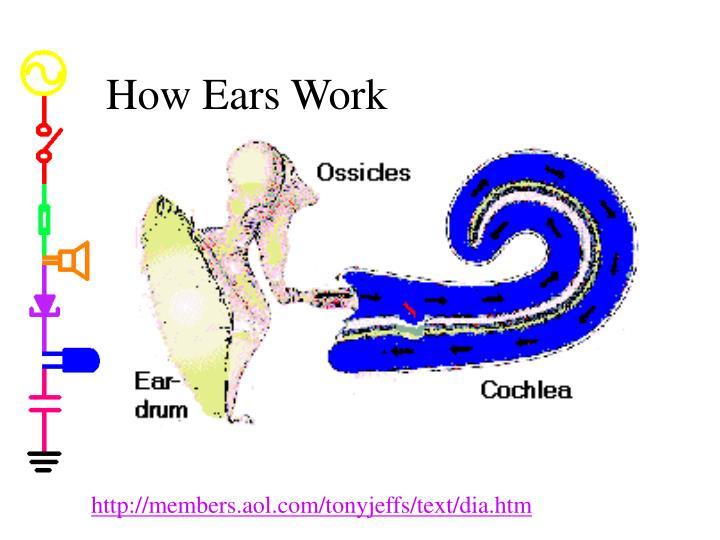 How Ears Work