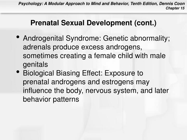 Prenatal Sexual Development (cont.)