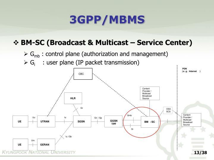 3GPP/MBMS