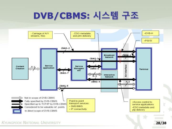 DVB/CBMS: