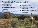 agricultural problems in the philippines