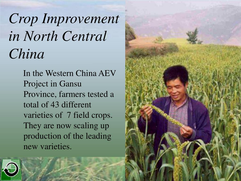 Crop Improvement in North Central China