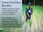 farmer led plant breeding