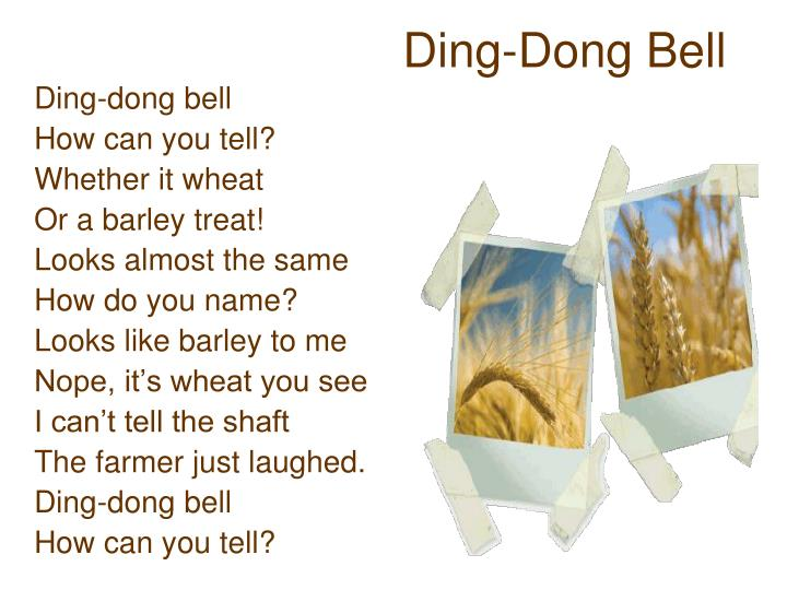 Ding-Dong Bell