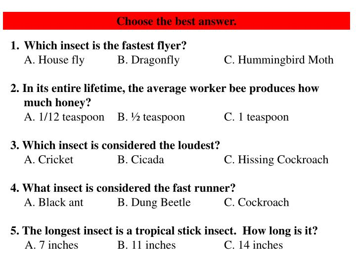 Choose the best answer.