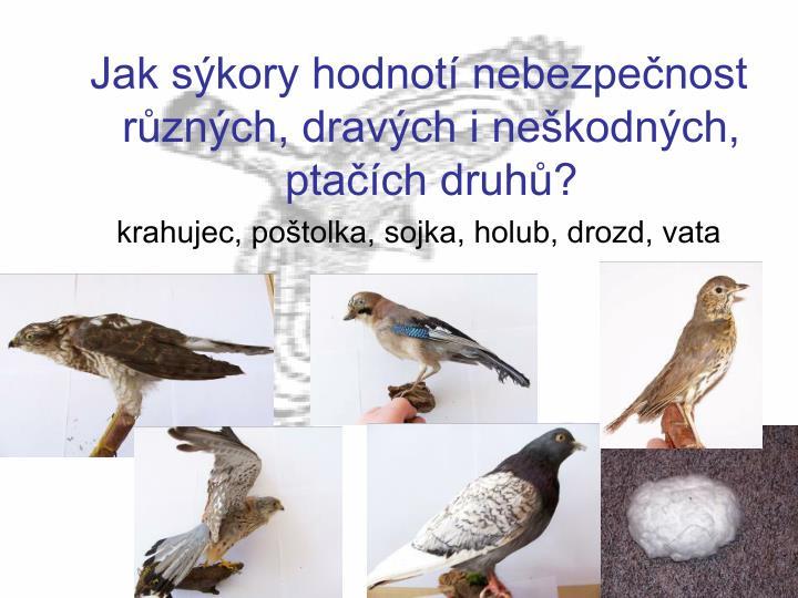 Jak sýkory hodnotí nebezpečnost různých, dravých i neškodných, ptačích druhů?