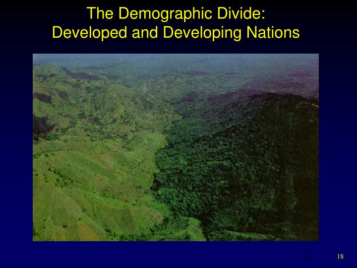 The Demographic Divide: