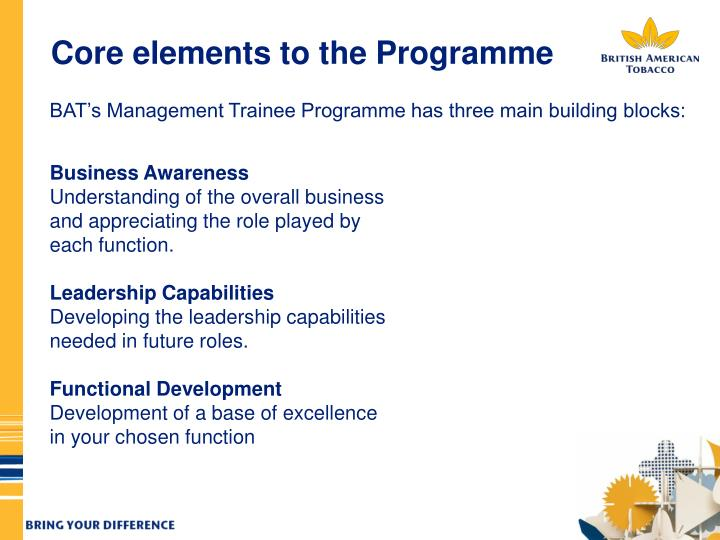 Core elements to the Programme
