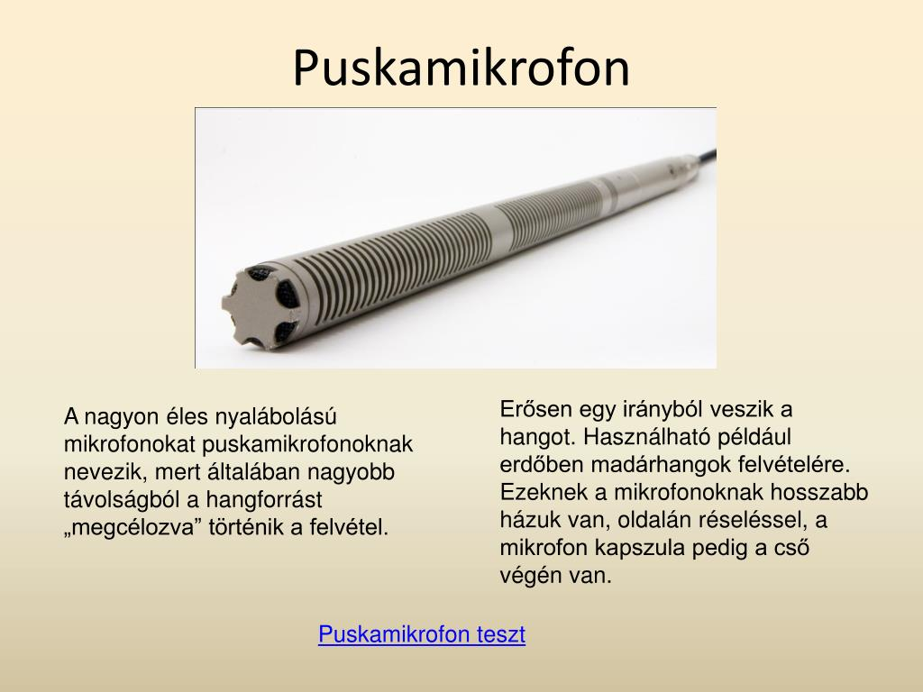 Puskamikrofon