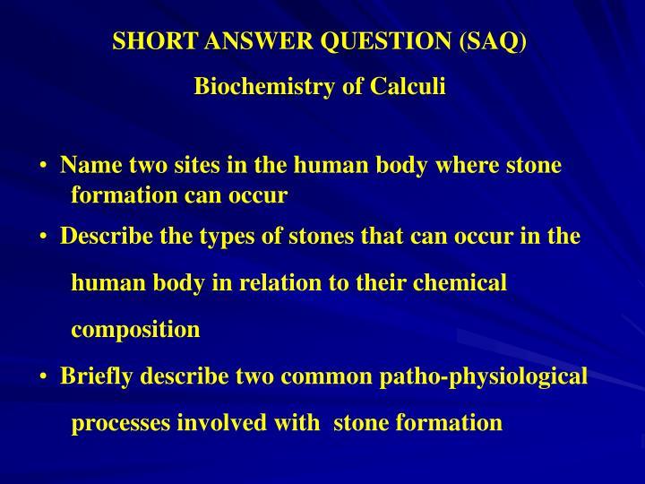 SHORT ANSWER QUESTION (SAQ)