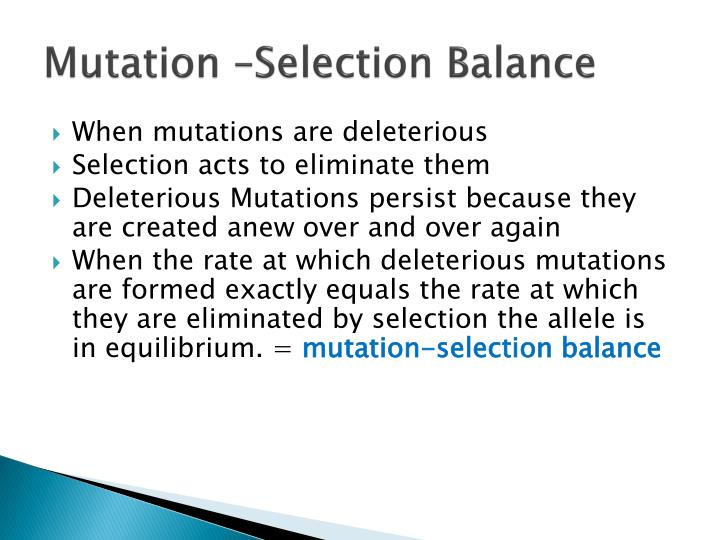 Mutation –Selection Balance