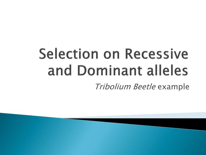 Selection on Recessive and Dominant alleles