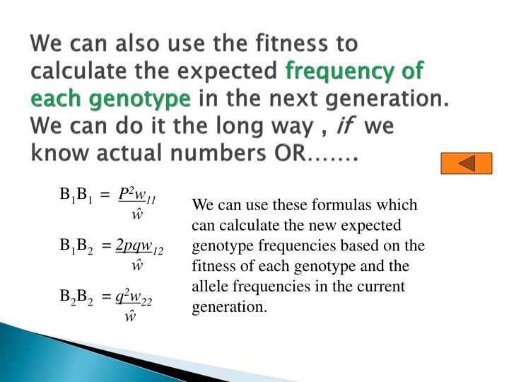We can also use the fitness to calculate the expected