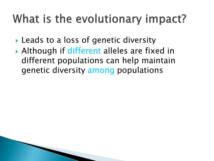 What is the evolutionary impact?