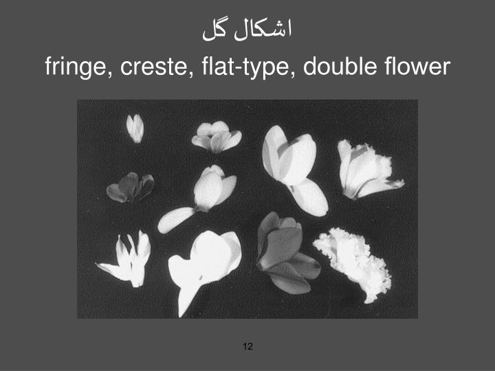 اشکال گل