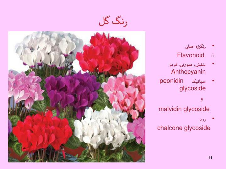 رنگ گل