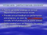 what are performance reviews