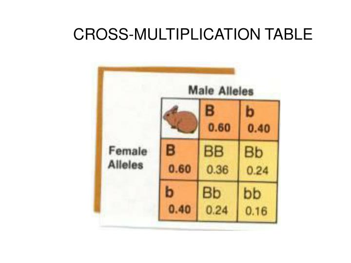 CROSS-MULTIPLICATION TABLE