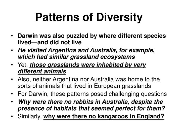 Patterns of Diversity