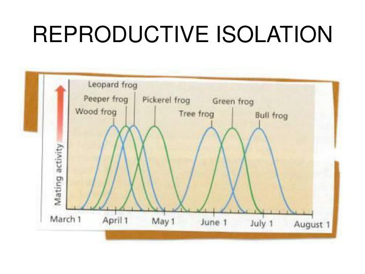 REPRODUCTIVE ISOLATION