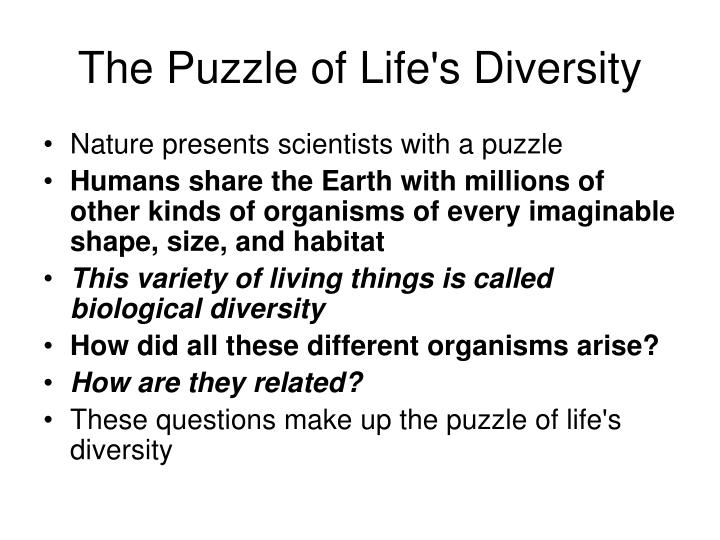 The Puzzle of Life's Diversity