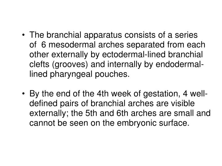 The branchial apparatus consists of a series of  6 mesodermal arches separated from each other ex...
