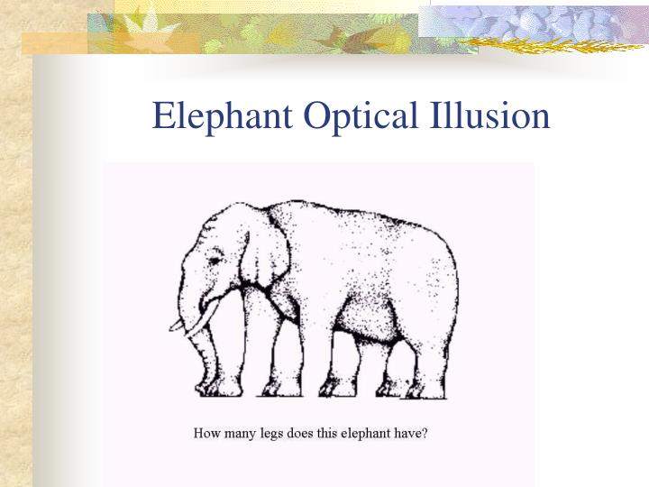 Elephant Optical Illusion