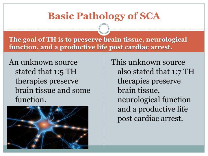 Basic Pathology of SCA