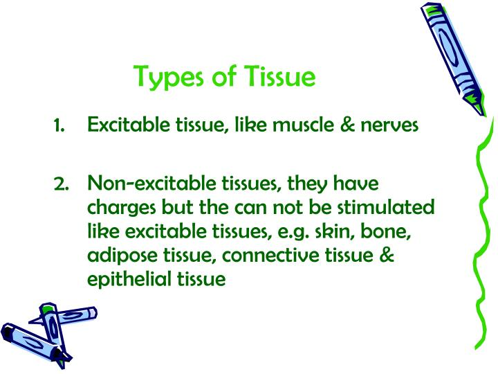 Types of Tissue
