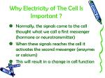 why electricity of the cell is important1