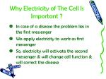 why electricity of the cell is important2