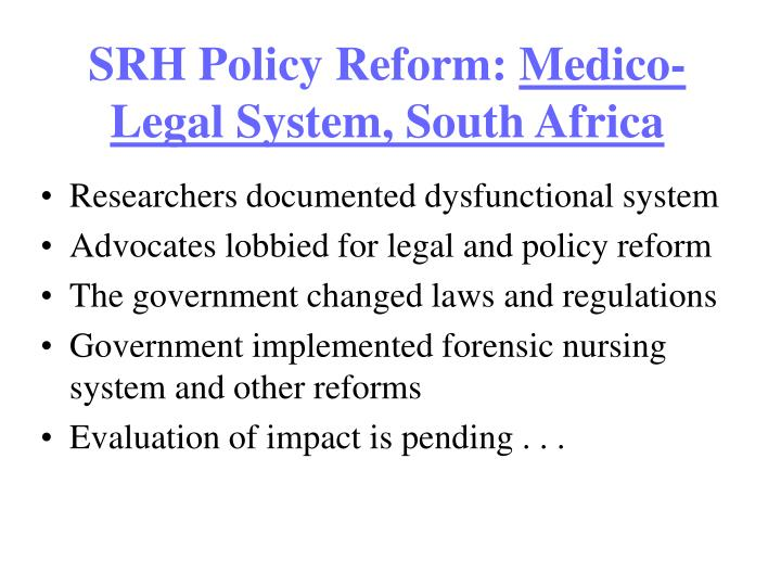 south african legal system pdf