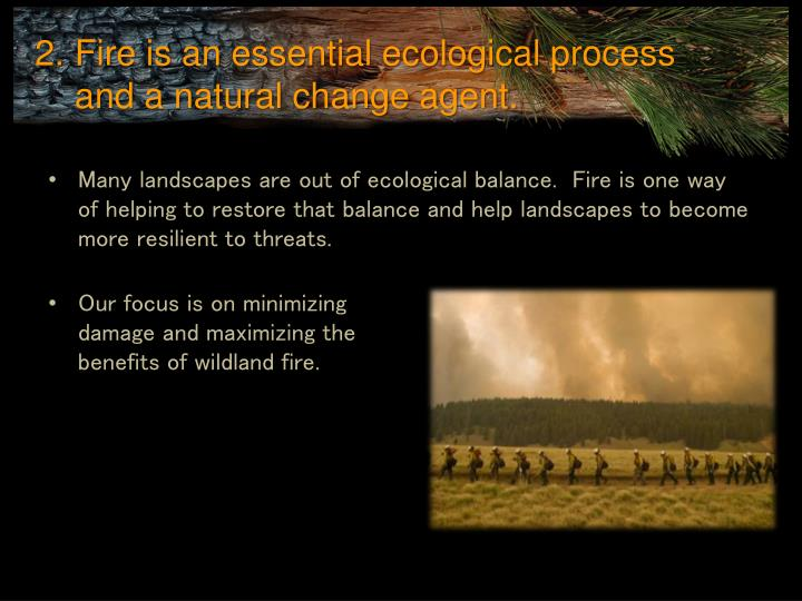 Fire is an essential ecological process and a natural change agent.