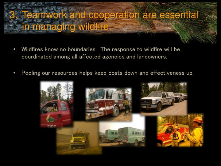 Teamwork and cooperation are essential in managing wildfire.