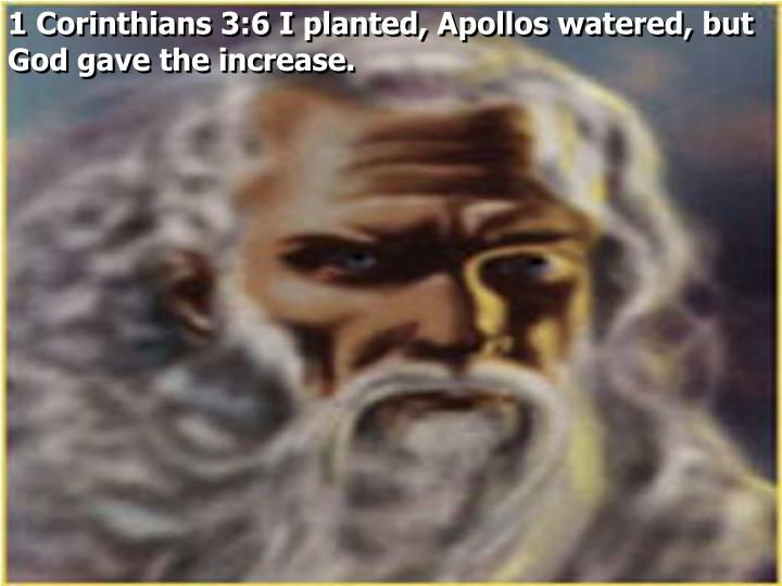 1 Corinthians 3:6 I planted, Apollos watered, but God gave the increase.